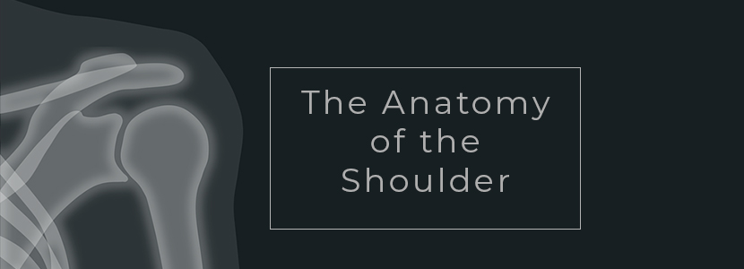 shoulder wear and tear injury